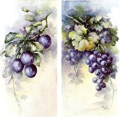 Plums & Grapes #72 by Sonie Ames China Painting Study 1976