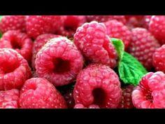 Raspberry Plants, Red Raspberry, Black Hawk, Berries, Fruit, Bury, Blackberry, Strawberries