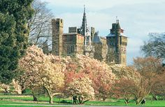 Cardiff castle. The view from Bute park
