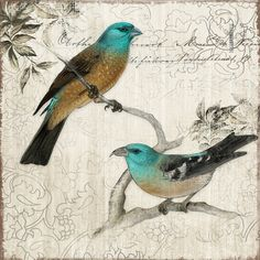Enhance the beauty of your home decor with the Yosemite Home Decor Revealed Artwork Nesting II Graphic Art on Canvas. This wall art depicts birds resting ...