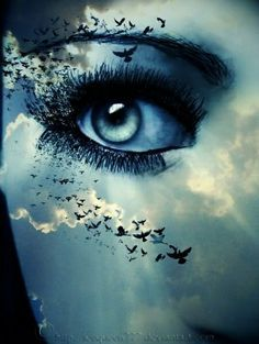 surrealistic skies with birds - Google Search