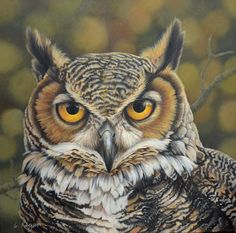 Painting of a great horned owl By Laura Regan. Owl Photos, Owl Pictures, Owl Bird, Bird Art, Beautiful Owl, Animals Beautiful, Owl Eyes, Great Horned Owl, Nocturne
