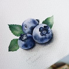 18 ideas for drawing nature pencil illustrations Drawing drawing Drawing nature. - 18 ideas for drawing nature pencil illustrations Drawing drawing Drawing nature Ideas Illustrations - Watercolor Fruit, Fruit Painting, Watercolor Pencils, Watercolour Painting, Watercolor Flowers, Painting & Drawing, Drawing Drawing, Drawing Ideas, Drawing Sheet