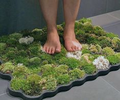 Appeal to the naturalist in you while keeping the bathroom floor dry with the moss bathroom mat. This living bathroom mat contains actual moss on the. Rustic Bathroom Vanities, Bathroom Red, Bathroom Plants, Rustic Bathrooms, Bathroom Wallpaper, Bathroom Ideas, Garden Bathroom, Bathroom Carpet, Bathroom Interior
