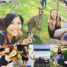 """Une journée inoubliable a #goldcoast au #currumbinWildlifeSanctuary entre copines inoubliable surtout grace a """"Yvonne"""" le petit koala que j'ai pu prendre dans mes bras  ce fut magique...! #australia #koala #wallaby #happy #crossfitgirl #weightlifter by happymelbnmt http://ift.tt/1X9mXhV"""
