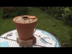 How to make a DIY Tandoor oven with Flower Pots - YouTube