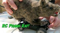 DIY RC RAT PRANK - HOW TO PRANK