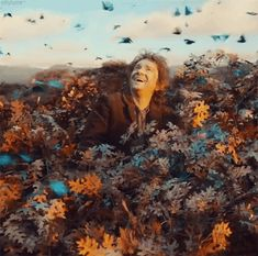 Bilbo and the butterflies - from the new trailer. This makes me really happy :)