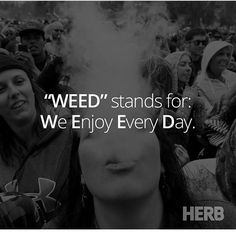 How To Vape Weed-Infographic Cannabis Positive Quote-Weed stands for We Enjoy Every Day. Stoner Quotes, Weed Humor, 420 Quotes, Trippy Quotes, Weed Facts, Stoner Humor, Frases, Herbs, Cards