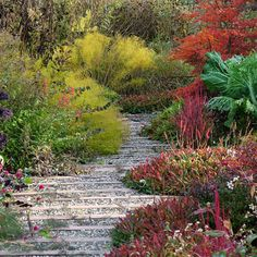 How to Plan for an Awesome Autumn: With the right plants, your garden can have a grand finale.