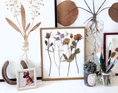 how to press flowers botanicals - http://apairandasparediy.com/2013/08/how-to-press-botanicals.html