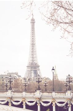 my favorite bridge!!!!!