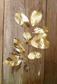 Magnolia Leaf Spray Gold, you can spray paint your own leaves