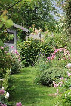 Derrière les murs de mon jardin