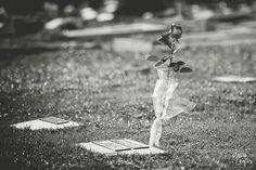 Hélio Campos | Fotografia: Um Ensaio sobre a Morte - Só que não....