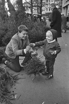 Kind koopt mini-kerstboom op de bloemenmarkt aan de Singel in Amsterdam, 20 december 1966.  English:  Child buying small Christmas tree.