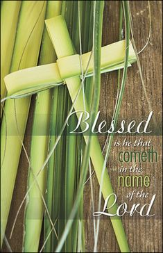 "Church Bulletin 11"" - Palm Sunday - Blessed is he (Pack of 50)"