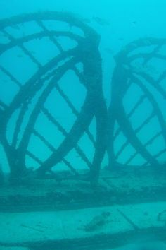 The Neptune Memorial Reef originally conceived by Gary Levine and Designed by Artist Kim Brandell and known as the Atlantis Reef Project or the Atlantis Reef is an underwater mausoleum