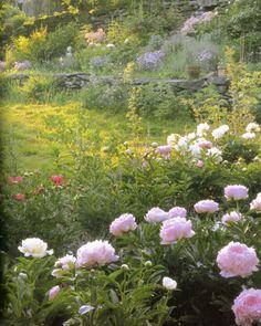 From the book Tasha Tudor's Gardens