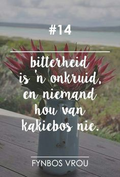 Bitterheid is 'n onkruid, en niemand hou van kakiebos nie Witty Quotes, Qoutes, Life Quotes, Funny Quotes, Inspirational Quotes, Afrikaanse Quotes, Special Words, Bible Prayers, Wedding Quotes