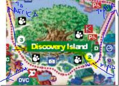 Disney Diva's SECRET short-cut through Animal Kingdom.