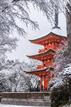 Snow in Kyoto (2) Standing in silence by Takk B on 500px