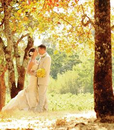 beautiful wedding picture - take my dress when we fly back to new york and take a photo oop with the fall leaves while we are there, than take the dress and take pics in california (jump in the ocean - maybe place to deport to our honeymoon - maybe a cruise),