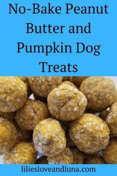 No Bake Dog Treats, Peanut Butter Dog Treats, Puppy Treats, Diy Dog Treats, Healthy Dog Treats, Soft Dog Treats, Peanut Butter Dog Biscuits, Frozen Dog Treats, Peanut Butter Banana