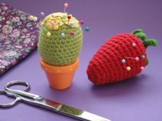 cactus,pin cushion