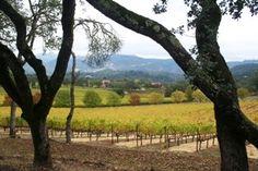 Salinas Valley Wineries