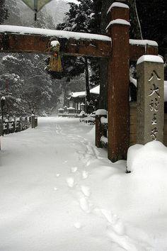 bluepueblo:  Snow Gate, Japan photo via tisha
