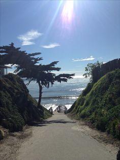 GoAltaCA | Mesa Lane Steps, Santa Barbara