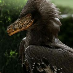 Velociraptor Profile Painted and Coloured With Photoshop by @DinoEsculturas.