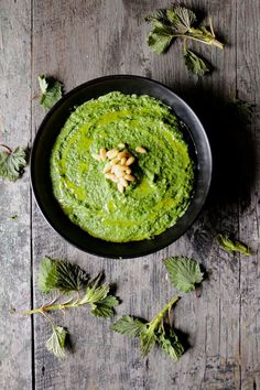 Time for nettle pesto, the stinging beauties are only ours to enjoy for a short while. Nettles grow everywhere and they are highly