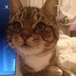 Jessieさん(@trashcanjonesfosters) • Instagram写真と動画