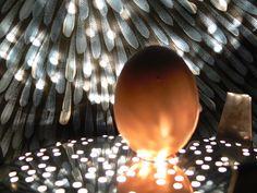 Esperimenti con le uova