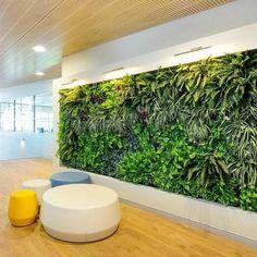 Vertical Garden Grande - Custom Size Artificial Green Wall – Garden Beet