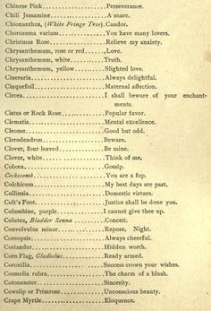 Polite Society at Home and Abroad, 1891 - Modern Writing A Book, Writing Prompts, Writing Tips, Fringe Tree, Flower Meanings, Herbal Magic, Christmas Rose, Victorian Flowers, Language Of Flowers