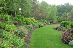 The Challenge of a Hill . . .: This photo shows both the garden on the hill and the garden that surrounds our patio.