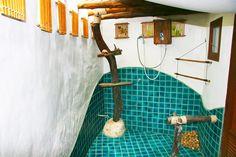 Yksi Koh Taon suosituimmista hotelleista. Täällä suihkuttelet viidakkotunnelmissa...  #Koh_Tao_Cabana  http://www.finnmatkat.fi/Lomakohde/Thaimaa/Koh-Tao/Koh-Tao-Cabana/?season=talvi-13-14  #Finnmatkat