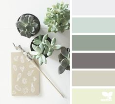 succulent hues color palette from Design Seeds