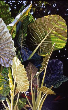 painting of Tropical plants with Koi