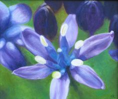 ARTFINDER: Blue Allium by Carole King - This beautiful blue Allium flower was found in Aberglasney Gardens in Carmarthenshire- it happened to be in flower the week we were exhibiting in the gallery...