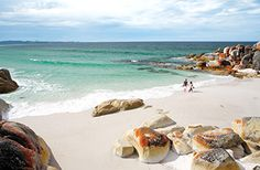 Bay of Fires, great free camp