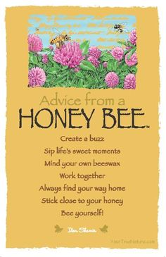 Advice from a honey bee. Create a buzz; Sip life's sweet moments Mind your own beeswax; Work together; Always fond your way home; Stick close to your honey; Bee yourself