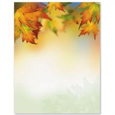 Autumn Maple Border Papers | PaperDirect