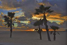 Beach Celestial, Sunset, Beach, Outdoor, Outdoors, Sunsets, Outdoor Games, Outdoor Life, The Sunset
