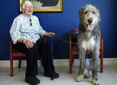 irish wolfhound and his human. both are precious.