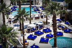 Sip Tails And Lounge By The Pool At South Beach Themed Tropicana Las Vegas