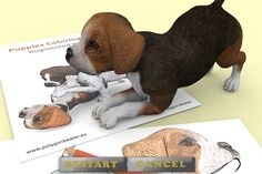 Puppies Coloring Book. Augmented reality apps.